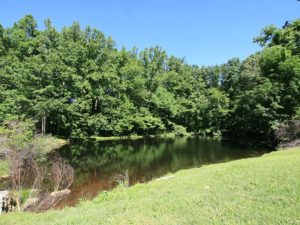 55-pond2-hidden-acres-campground